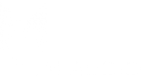 LM Audio